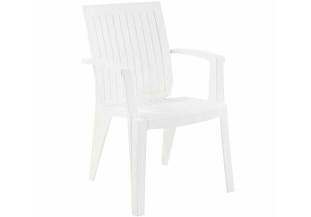 Кресло пластиковое для сада Ализе белое 01 - Фото №1