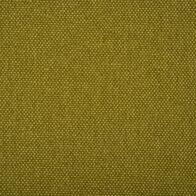 bagama-green