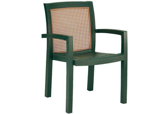 Кресло для сада Вира зеленое 05 - Фото №1