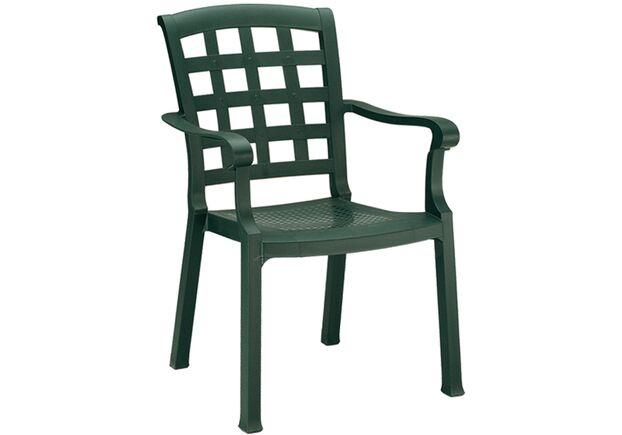 Кресло для сада Паша зеленое 05 - Фото №1