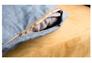 Диван-кровать CRUZO Уго натуральный ротанг с желтым матрасом  - Фото №10